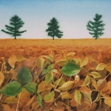 "Beanfield. Watercolour on paper. 11x15"". Lianne Todd. SOLD. Private collection."