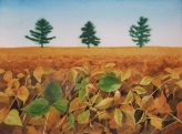 "Beanfield. Watercolour on paper. 11x15"". Lianne Todd. $280"
