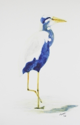 "Heron. Watercolour on Yupo. 13x20"". $450. Lianne Todd"