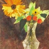 "Backlit Beauties. Watercolour on Gessoed Paper. 11x15"". Artist Lianne Todd. $295."