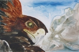 "Eagle Eye. Watercolour on Yupo. 13x20"". Lianne Todd. $450"