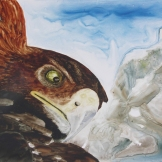 "Eagle Eye. Watercolour on Yupo. 13x20"". Lianne Todd. $475."